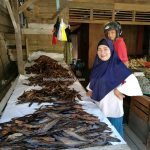 Pasar Flamboyan, Kapuas river, fish market, traditional, backpackers, seafood, Borneo, Indonesia, Tourism, tourist attraction, travel guide, Trans Border, 婆羅洲早市, 印尼西加里曼丹