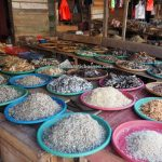Pasar Flamboyan, Sungai Kapuas, local market, traditional, event, native, Gawai Dayak, Borneo, West Kalimantan, Tourism, tourist attraction, travel guide, 印尼西加里曼丹, 塞卡道原住民早市