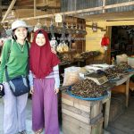 Pasar Flamboyan, Pasar ikan, Sungai Kapuas, fish market, authentic, traditional, backpackers, native, Ethnic, Obyek wisata, travel guide, Transborneo, 婆罗洲游踪, 西加里曼丹早市