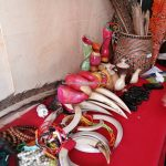 Gawai Dayak, Stadion Baning, authentic, traditional, culture, Indonesia, West Kalimantan, ethnic, native, wisata budaya, Tourism, travel guide, trans Border, 婆罗洲土著部落, 印尼西加里曼丹,