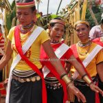 Kampung Gumbang, Gawai Serumpun, Dayak Bidayuh, harvest festival, traditional, Sarawak, budaya, culture, native, Tourist attraction, travel guide, cross border, 传统原住民丰收节日, 婆罗洲比达友铜环女, Sungkung Medeng, Kalimantan Barat