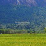 Kelam Hill, batu raksasa, Black Rock, nature, outdoor, conservation, destination, Kalimantan Barat, Desa Merpak, Kelam Permai, wisata alam, Tourism, travel guide, Cross Border, 婆罗洲自然生态, 印尼西加里曼丹,