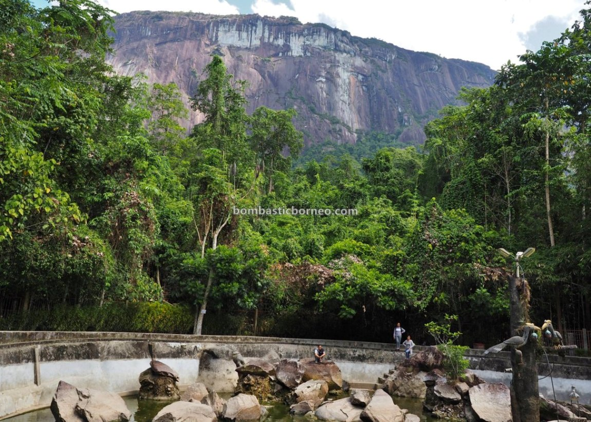 Gua Maria, Kelam hill, Virgin Mary Grotto, wildlife, Sintang, nature, Borneo, obyek wisata, Tourism, Travel guide, 婆罗洲游踪, 印尼西加里曼丹,