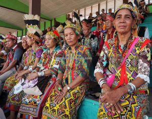 Kapuas Hulu, Paddy harvest festival, thanksgiving, budaya, West Kalimantan, indigenous, native, tribal, Suku Dayak, obyek wisata, Cross Border, Borneo, 印尼卡普阿斯胡卢, 西加里曼丹富都旅游, 婆罗洲土著丰收节日,