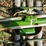 Gawai Harvest Festival, culture, budaya, destination, Borneo, Bau, Sarawak, Malaysia, dayak bidayuh, Ethnic, Tourism, tourist attraction, 砂拉越达雅文化, 马来西亚土著部落, 原住民丰收节日
