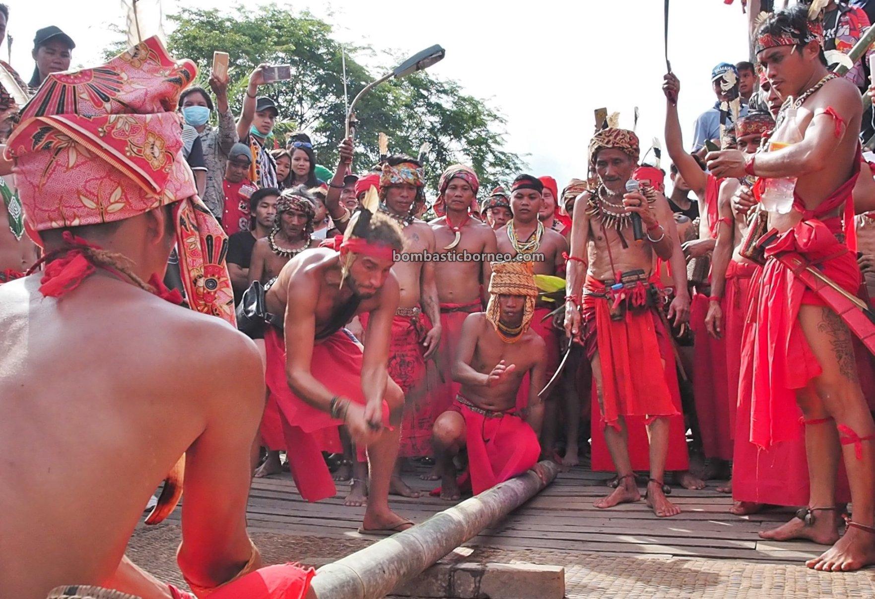 Nyobeng Sebujit, Gawai Harvest Festival, traditional, Destination, Bengkayang, Indonesia, Kalimantan Barat, Indigenous, native, tribe, wisata budaya, Tourism, travel guide, bamboo chopping, Trans Borneo, 探索原住民传统文化