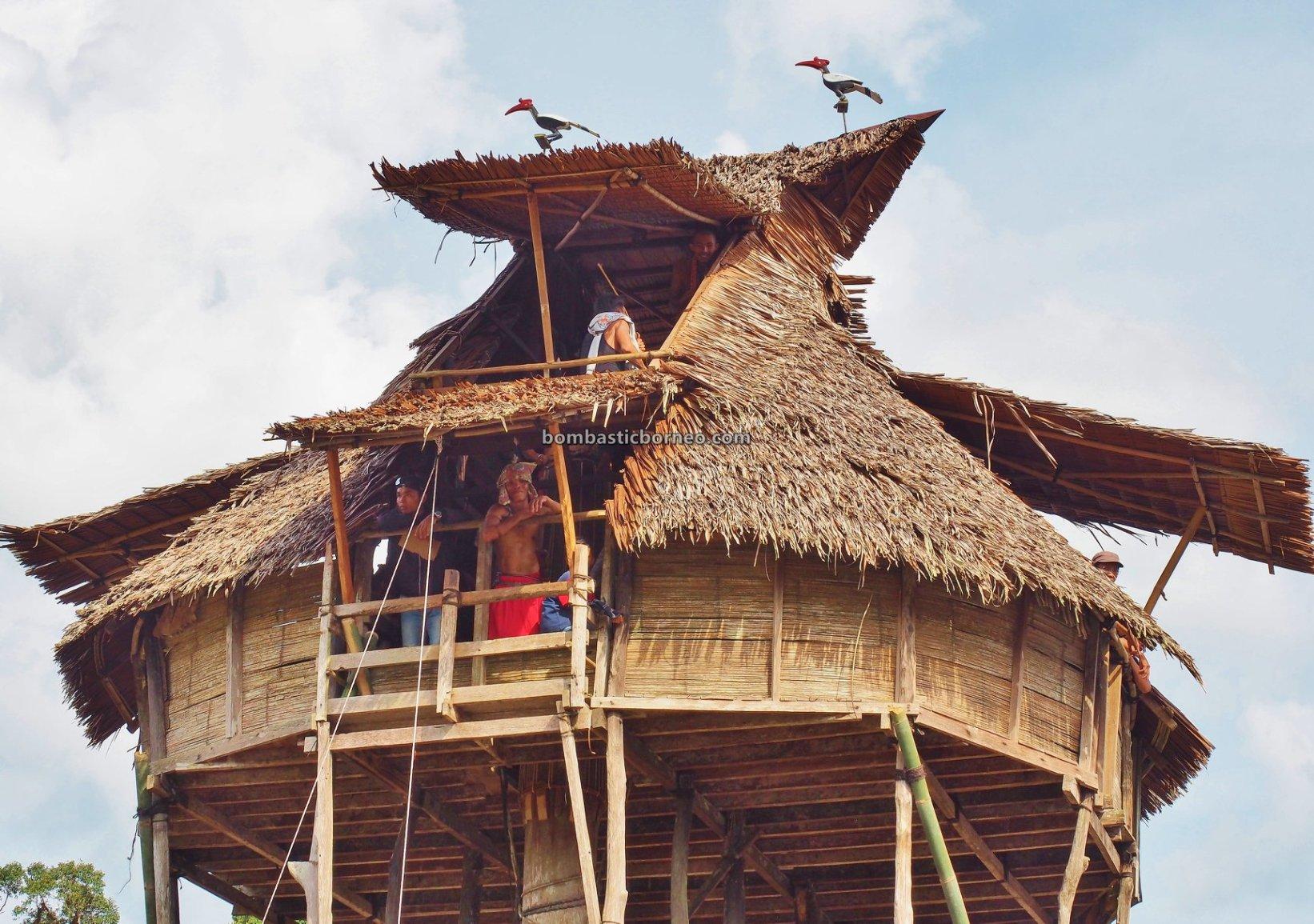 Nyobeng Gawai, Paddy Harvest Festival, authentic, traditional, Kalimantan Barat, Desa Hli Buei, Siding, Dayak Bidayuh, native, tribal, skull house, wisata budaya, Tourism, Trans Border, 探索婆罗洲比达友族, 印尼西加里曼丹部落