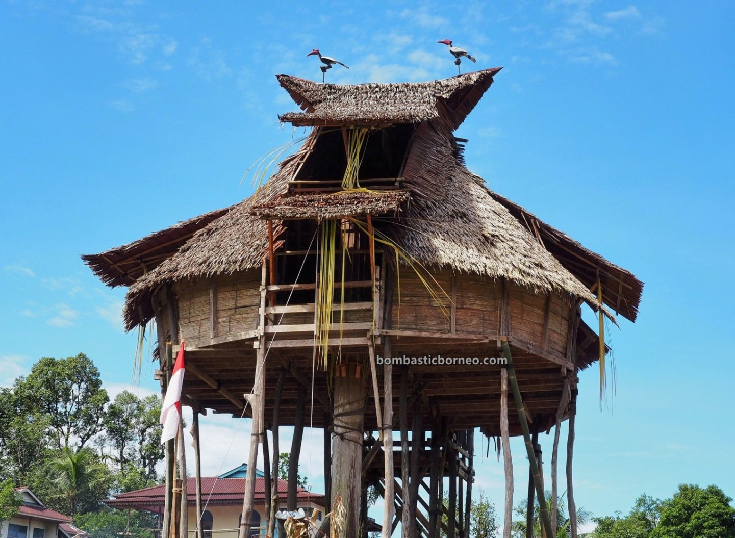 Gawai padi, Paddy Harvest Festival, authentic, traditional, Destination, budaya, Indonesia, West Kalimantan, Dayak Bidayuh, Obyek wisata, Tourism, travel guide, Borneo, 探索婆罗洲达雅部落, 西加里曼丹比达友族, 印尼原住民丰收节,
