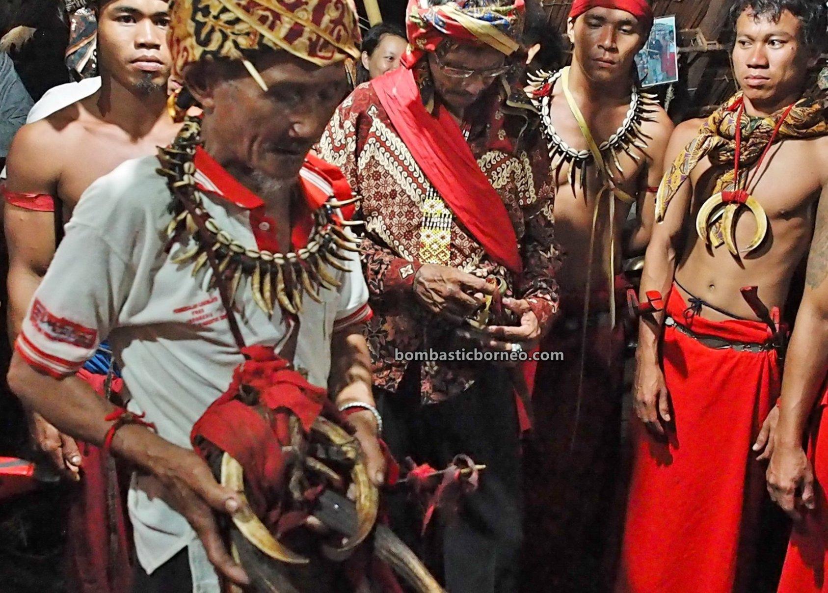 Gawai Dayak, thanksgiving, traditional, ritual, Indonesia, Ethnic, tribal, Baruk, Tourism, tourist attraction, travel guide, Cross Border, Borneo, 印尼西加里曼丹旅游, 婆罗洲达雅丰收节日, 原住民传统文化