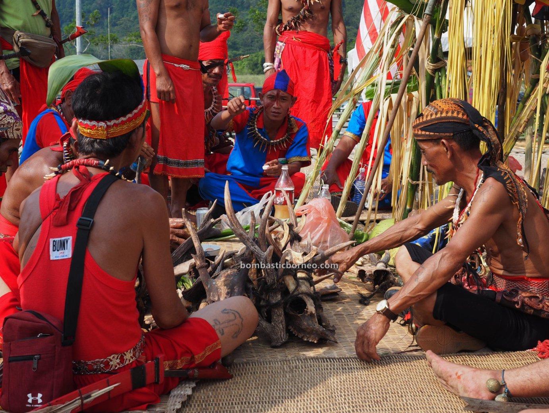 Pesta Nyarok Biya, Bengoh Dam Resettlement Scheme, adat, traditional, ritual, event, dayak bidayuh, Gawai Nyobeng, Borneo, Sarawak, Malaysia, Padawan, skull feeding, Tourism, travel guide, cross border,
