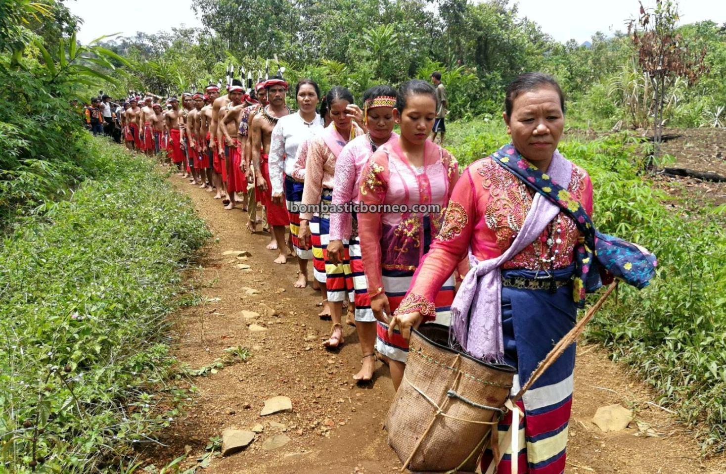 Nyobeng Rambai, Paddy Harvest Festival, authentic, village, backpackers, Indonesia, Kalimantan Barat, Bengkayang, Desa Sahan, Dayak Bidayuh, Native, indigenous, Tourism, travel guide, cross border, Borneo