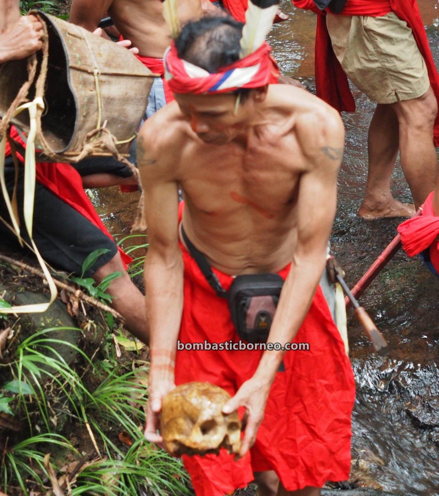 Gawai Harvest Festival, traditional, destination, budaya, Kalimantan Barat, Bengkayang, Seluas, tribal, indigenous, skull washing, Tourism, tourist attraction, ritual, 跨境婆罗洲游踪, 印尼原住民丰收节, 西加里曼丹达雅文化