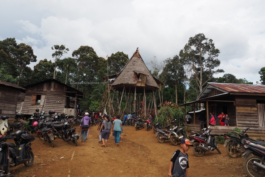 Gawai harvest Festival, traditional, destination, Kalimantan Barat, Desa Sahan, Dayak Bidayuh, skull house, Rumah Adat Baruk, Tourism, tourist attraction, travel guide, Trans Borneo, 婆罗洲土著部落, 印尼西加里曼丹, 孟加映原住民丰收节