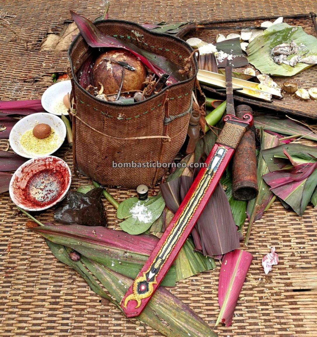 Nyobeng Rambai, Thanksgiving, traditional, village, budaya, Indonesia, Kalimantan Barat, Bengkayang, Dayak Bidayuh, Native, tribal, Tourism, tourist attraction, 跨境婆罗洲游踪, 印尼原住民丰收节, 西加里曼丹达雅文化
