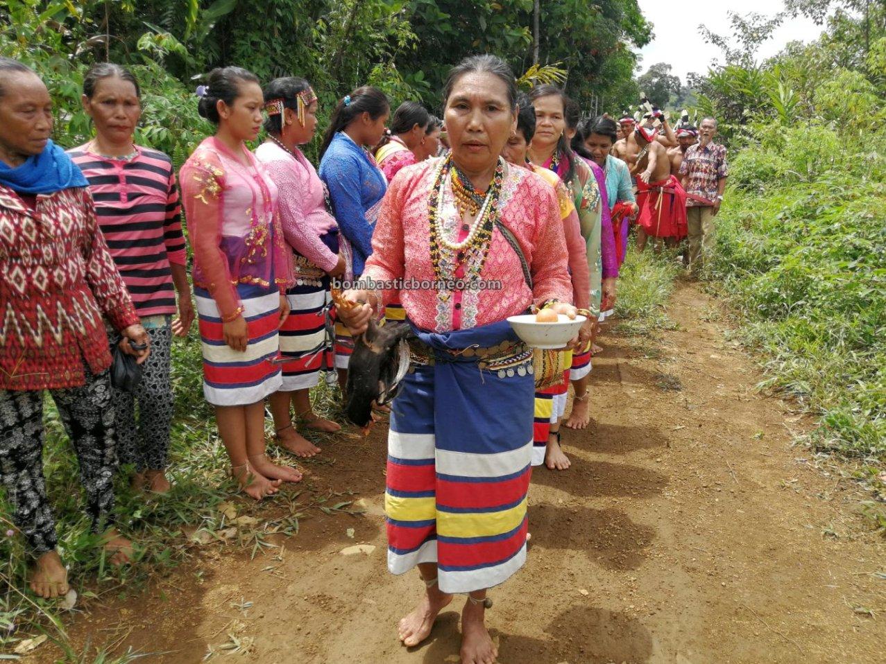 Nyobeng Rambai, Gawai Harvest Festival, authentic, village, backpackers, culture, West Kalimantan, Desa Sahan, Native, obyek wisata, Tourism, cross border, Borneo, 婆羅洲达雅传统文化, 印尼西加里曼丹, 孟加映比达友丰收节