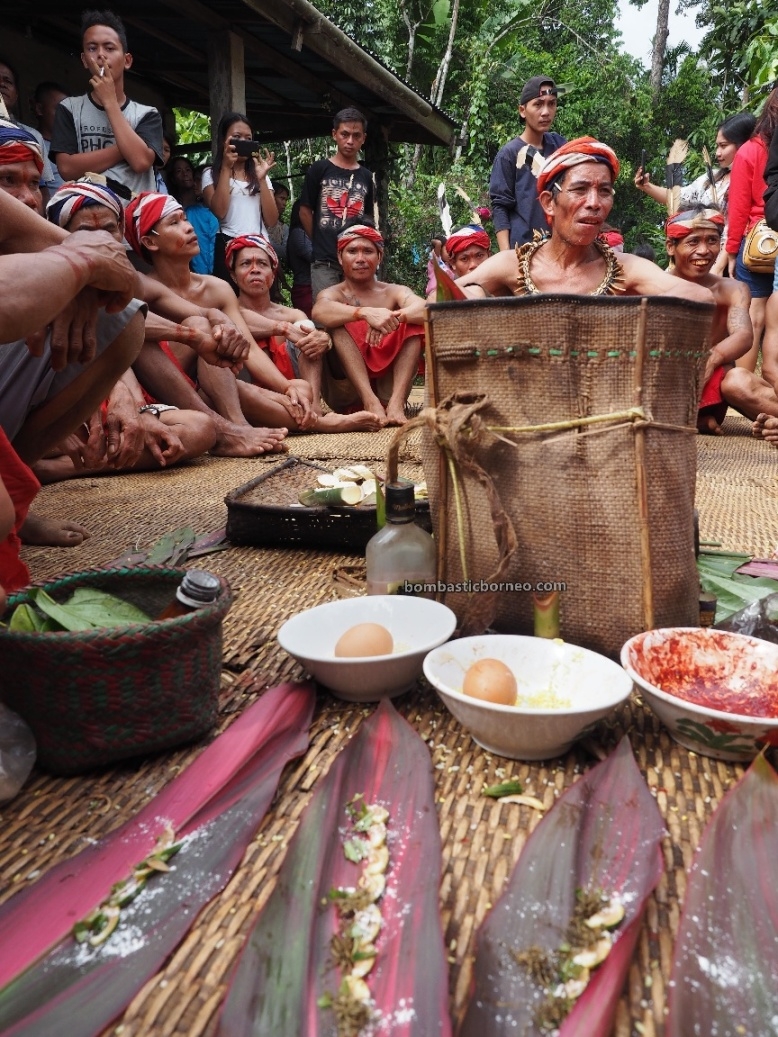 Gawai Harvest Festival, authentic, traditional, destination, Kalimantan Barat, Bengkayang, Desa Sahan, Dayak Bidayuh, tribe, native, Obyek wisata, travel guide, 探索婆罗洲游踪, 加里曼丹原住民文化, 孟加映达雅丰收节,