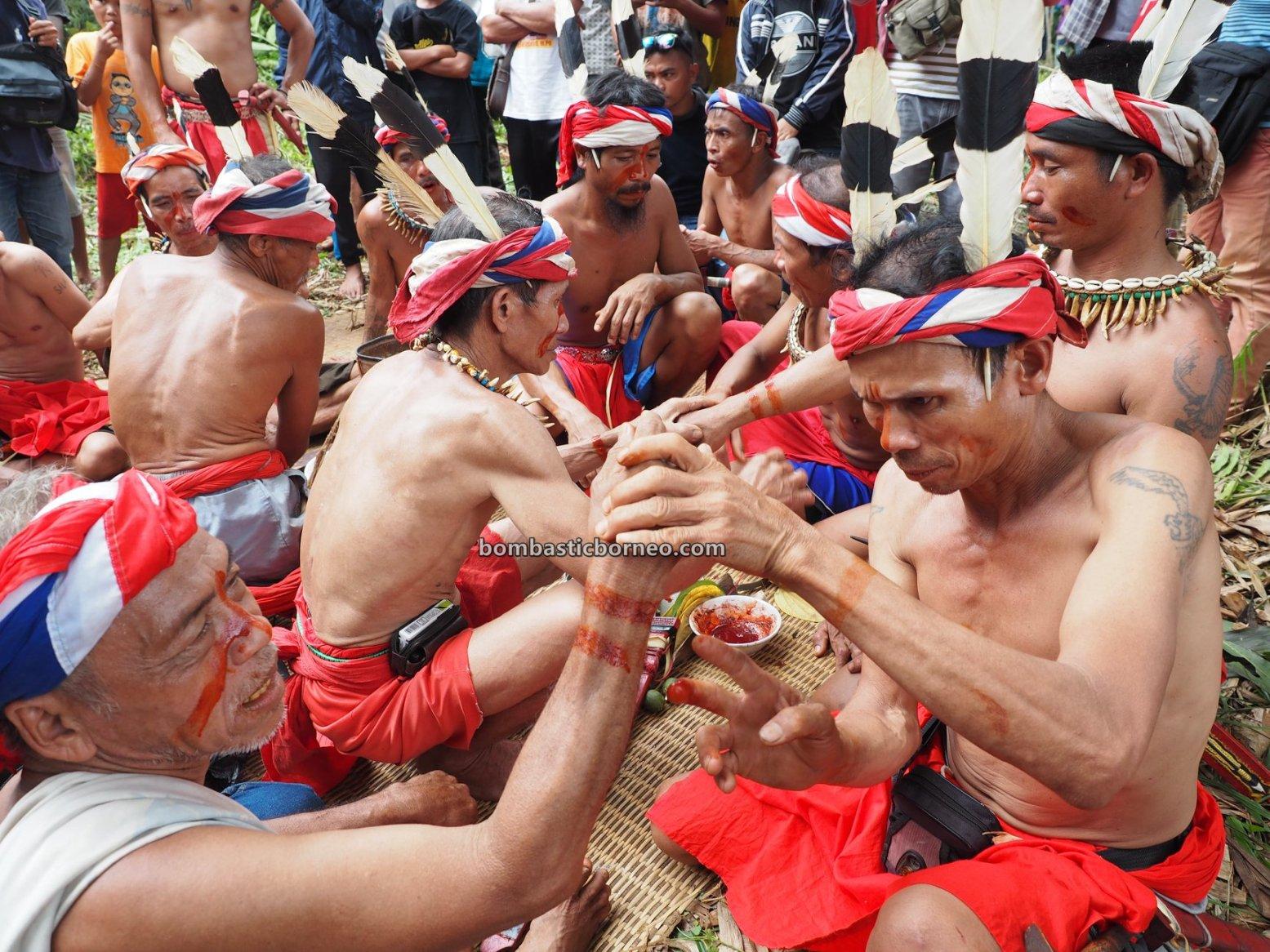 Gawai Dayak, Paddy Harvest Festival, authentic, traditional, budaya, Bengkayang, Desa Sahan, Native, Ethnic, indigenous, objek wisata, travel guide, Trans Borneo, 婆羅洲达雅传统文化, 印尼西加里曼丹, 孟加映比达友丰收节