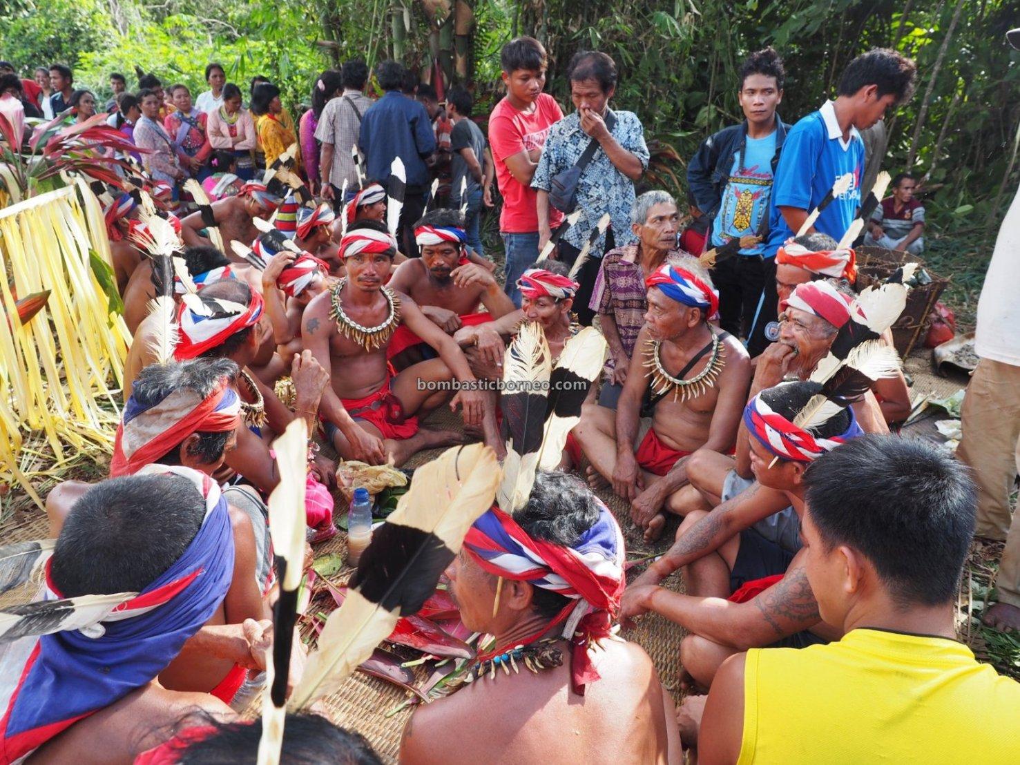 Nyobeng Rambai, Gawai Harvest Festival, authentic, village, backpackers, Dayak Bidayuh, Native, tribe, ritual, Tourism, travel guide, trans border, Borneo, 婆罗洲传统文化, 西加里曼丹孟加映, 印尼达雅丰收节日