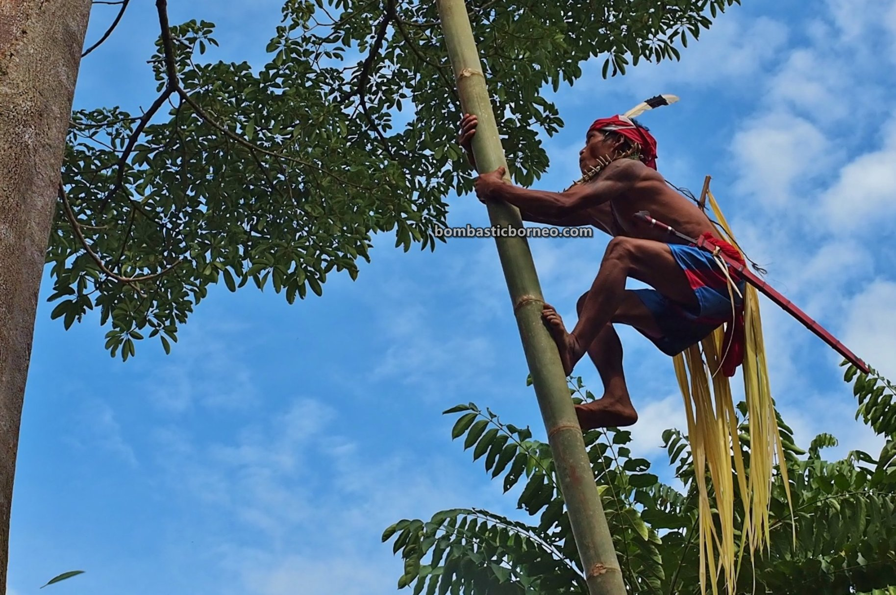 Bamboo climbing, Paddy Harvest Festival, adventure, traditional, budaya, Bengkayang, Desa Sahan, Dayak Bidayuh, Native, Tourism, tourist attraction, travel guide, Borneo, 探索婆罗洲游踪, 西加里曼丹原住民文化, 孟加映达雅丰收节,