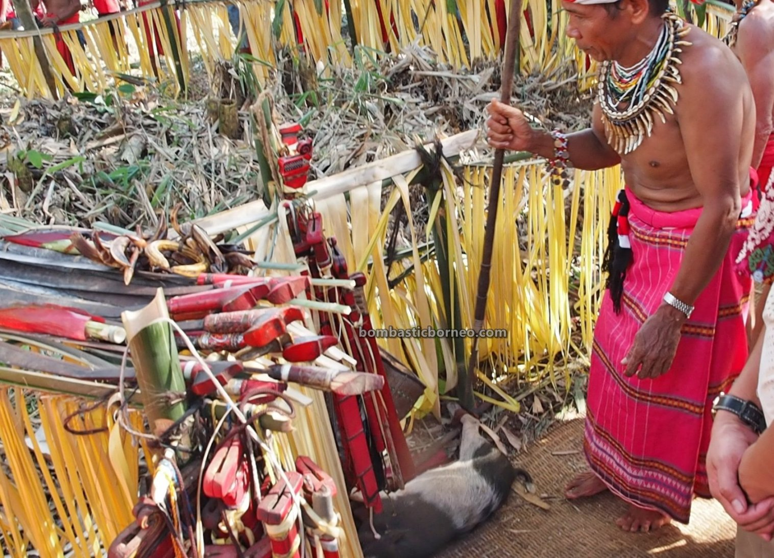 ritual, Nyobeng Rambai, Gawai Harvest Festival, authentic, backpackers, Indonesia, Bengkayang, Desa Sahan, Dayak Bidayuh, Native, Tourism, tourist attraction, cross border, 印尼西加里曼丹, 婆罗洲达雅丰收节日, 比达友族传统文化