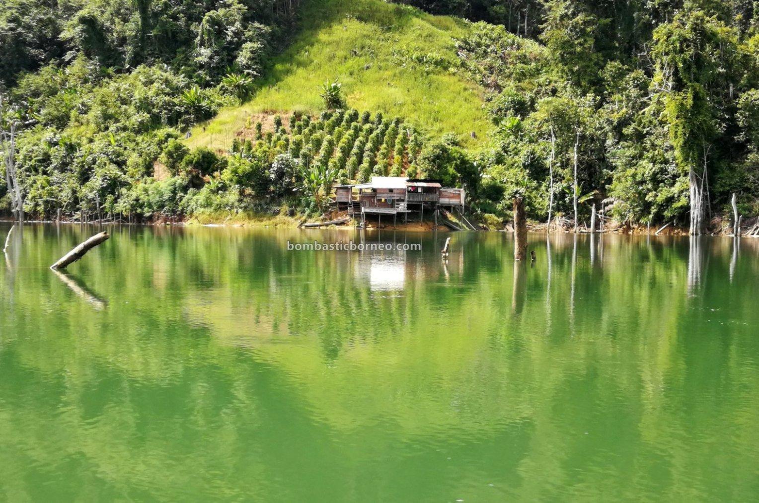 Bakun Embankment Dam, empangan, native, destination, Sungai Balui, traditional, fishing trip, Sarawak, Kapit, Malaysia, Tourism, tourist attraction, travel guide, Borneo, 马来西亚钓鱼之旅,