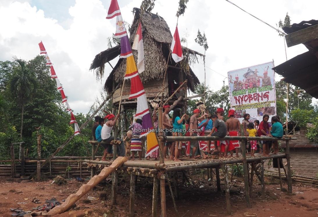 Gawai Nyobeng, Dusun Kambih, thanksgiving, authentic, Indonesia, West Kalimantan, Bengkayang, Desa Bengkawan, Dayak Kowon't, tribe, native, Rumah Adat Baluk, Tourism, destination, village, Trans Borneo,