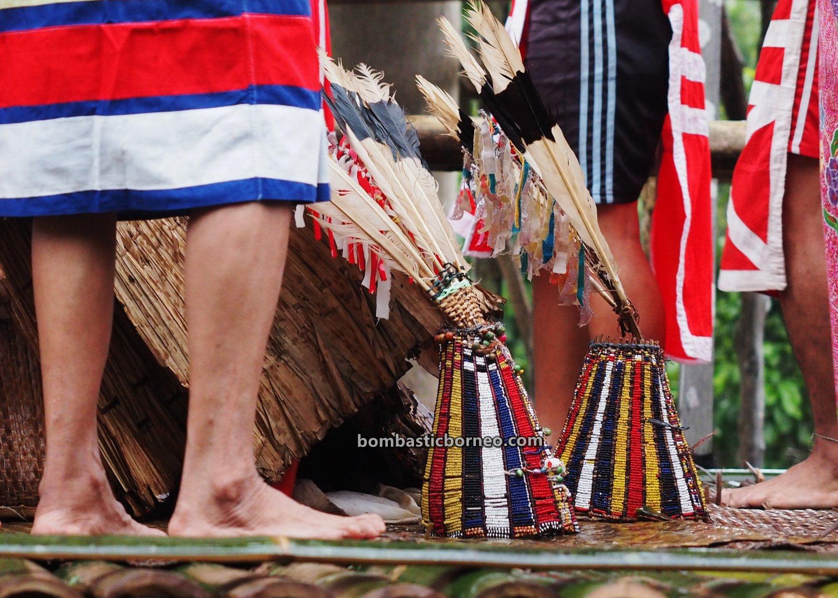 Nyobeng Kambih, traditional, destination, Culture, Indonesia, West Kalimantan, Desa Bengkawan, Ethnic, native, tribal, Tourism, Travel guide, Trans Borneo, 跨境婆罗洲游踪, 印尼西加里曼丹, 原住民丰收节日,