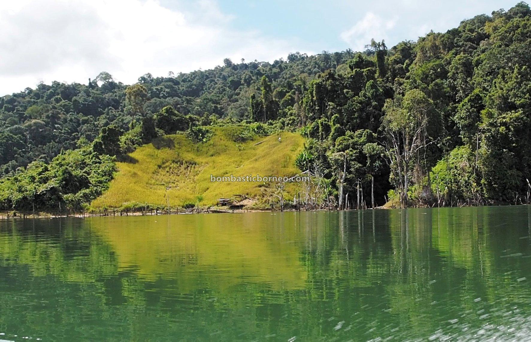 Embankment Dam, empangan, destination, Sungai Balui, native, fishing trip, chalet, Sarawak, Tourism, tourist attraction, travel guide, Borneo, 婆罗洲砂拉越, 巫拉甲峇贡水坝, 加帛马来西亚,