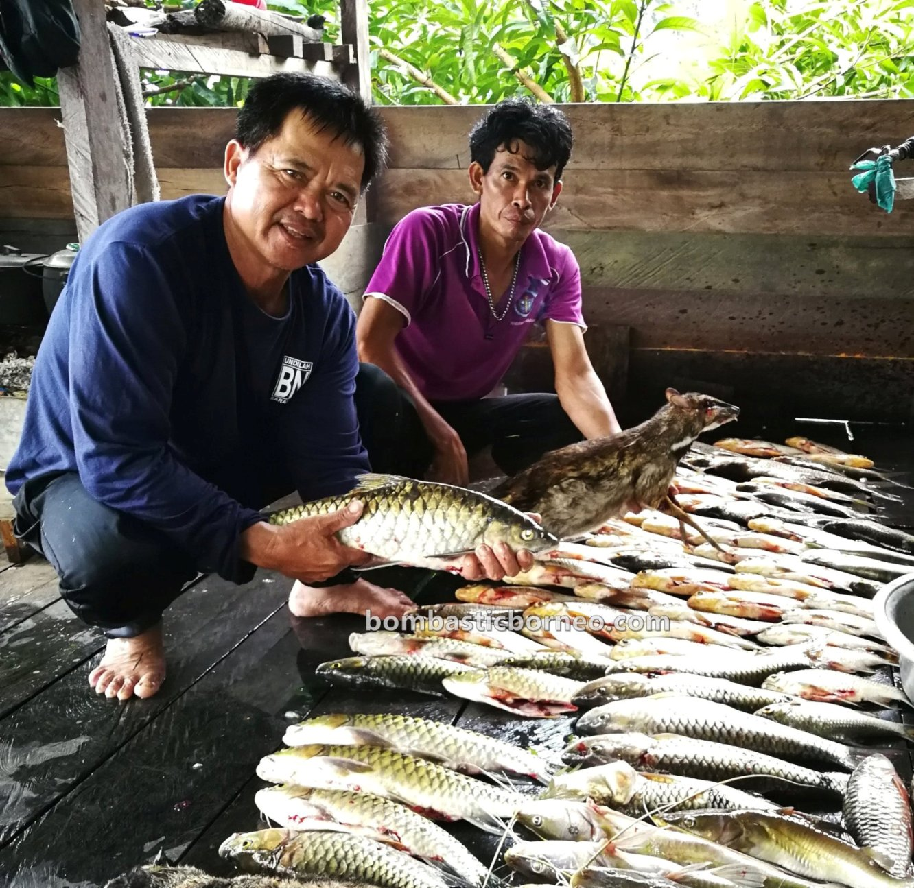 destination, Ikan semah, traditional, fishing trip, memancing, hunting, Belaga, Kapit, native, tourist attraction, travel guide, Trans Borneo, 婆罗洲钓鱼之旅, 砂拉越巴贡水电站, 巫拉甲马来西亚,