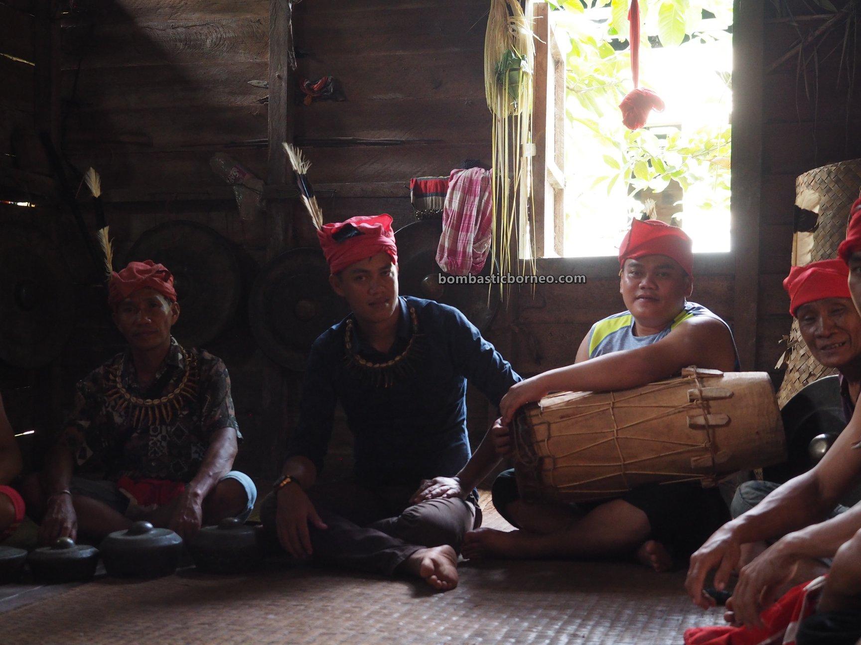 Nyobeng, thanksgiving, traditional, budaya, event, Indonesia, Kalimantan Barat, Bengkayang, Seluas, native, tribe, Tourism, Travel guide, Trans Border, 印尼西加里曼丹, 孟加映土著部落