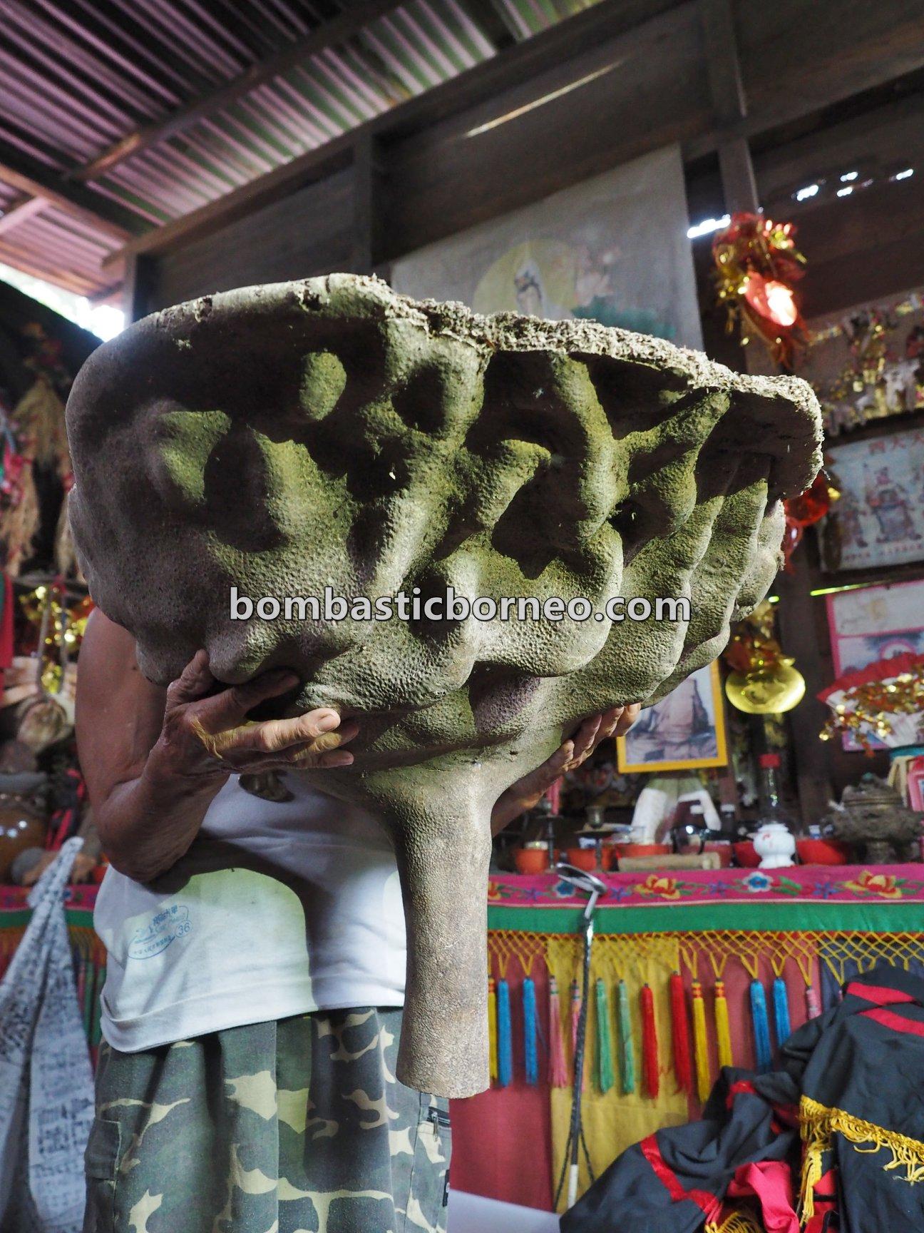 Panglima Siru, Dukun, Shaman, antiques, medicine, herbal, Bengkayang, Dusun Paling Dalam, Sango, Sanggau Ledo, village, Cross Border, 跨境婆罗洲游踪, 印尼西加里曼丹, 孟加映菌菇