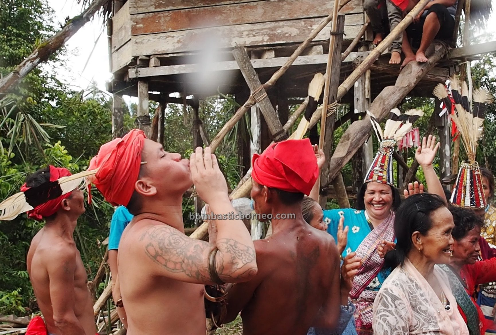 Gawai Padi, Paddy Harvest Festival, traditional, Indonesia, budaya, Desa Bengkawan, Dayak Kowon't, Ethnic, native, Tourism, tourist attraction, Travel guide, Trans Borneo, 穿越婆罗洲游踪, 西加里曼丹达雅部落, 印尼孟加映原住民