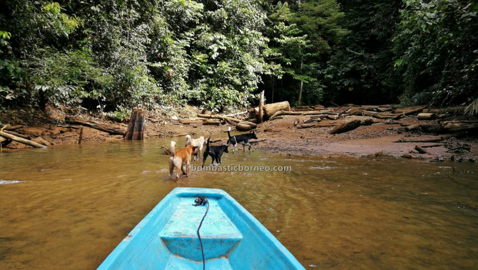 Embankment Dam, empangan, memburu, Ikan semah, fishing trip, Long Bulan, native, Tourism, tourist attraction, travel guide, Borneo, Sungai Balui, destination, 婆罗洲狩猎之旅, 砂拉越布拉甲