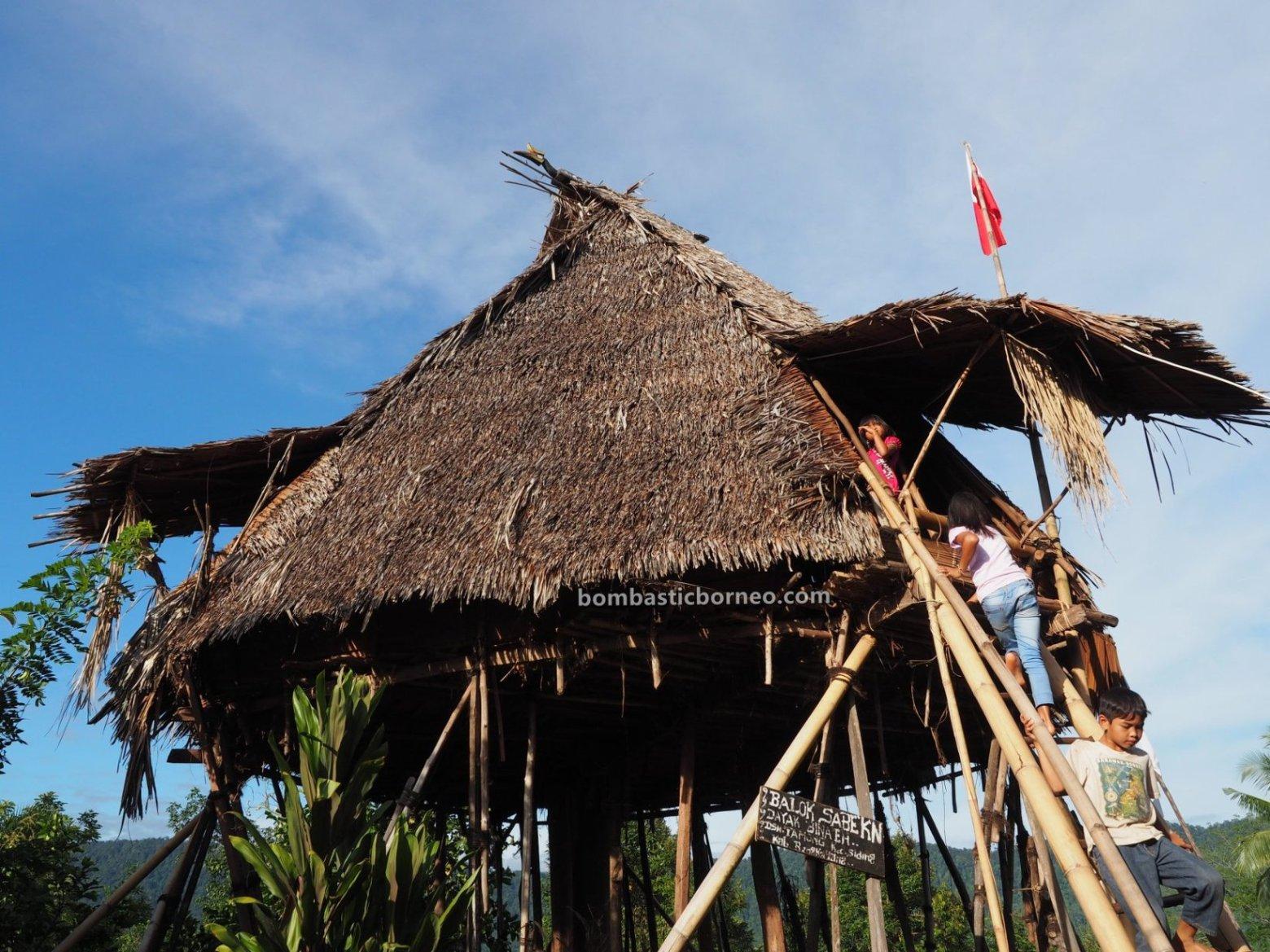Dusun Tamong, authentic, traditional, culture, exploration, Indonesia, West Kalimantan, Bengkayang, Dayak Bidayuh, tribal, tourist attraction, travel guide, Trans Borneo, Baruk, Rumah Adat Baluk, skull house,