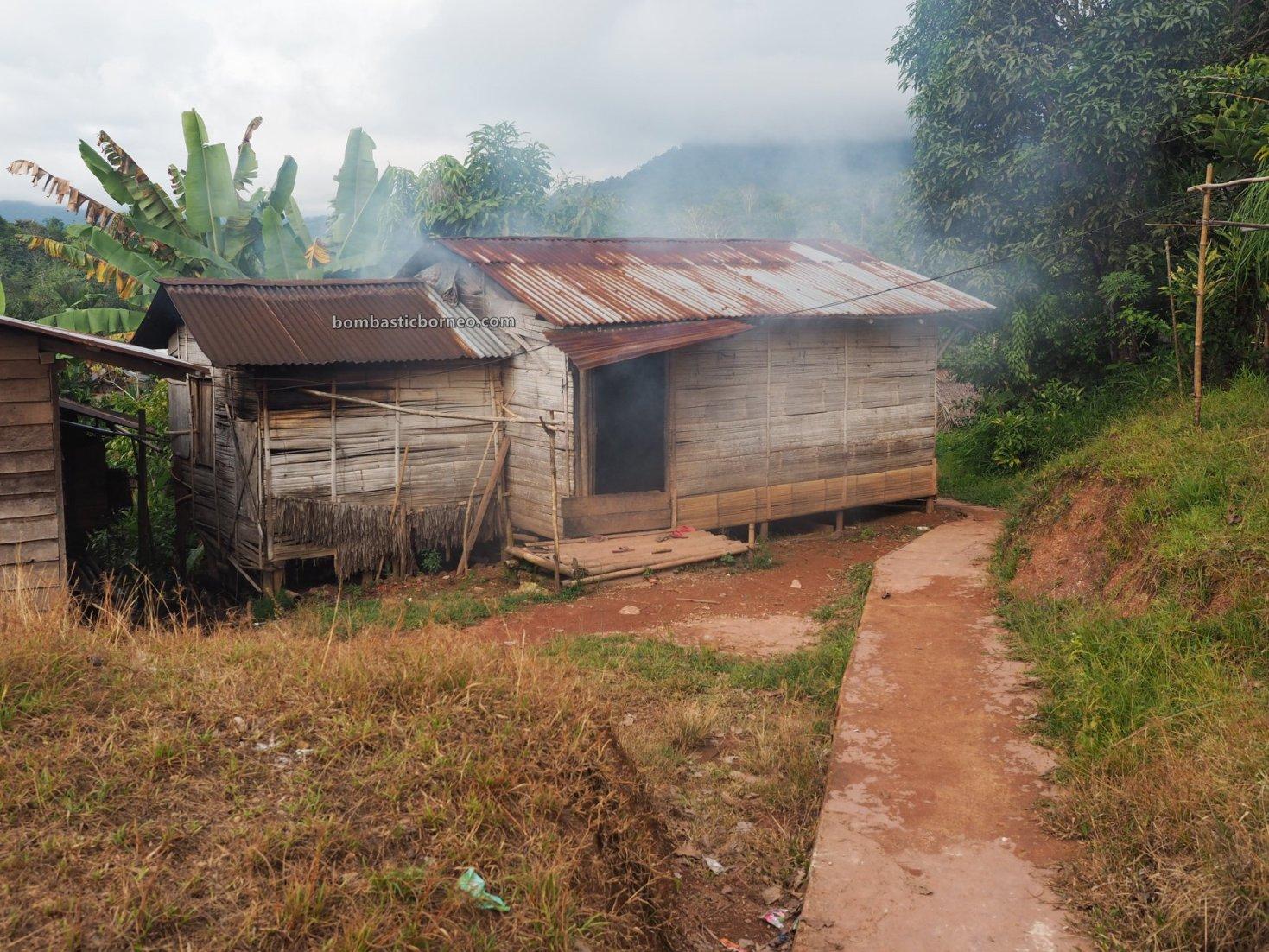 Desa Tamong, authentic, Traditional, village, destination, Indonesia, West Kalimantan, Bengkayang, Siding, ethnic, native, Dayak Bidayuh, travel guide, Borneo, Trans Border,