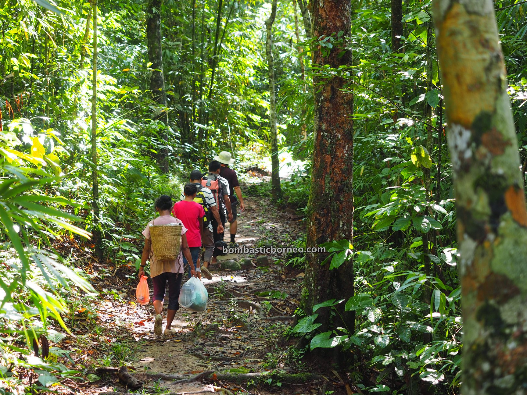 Dusun Simpang Empat, nature, outdoor, jungle hiking, exploration, Indonesia, Bengkayang, Desa Bengkawan, Seluas, Tourism, travel guide, native, village, 婆罗洲丛林徒步, 印尼西加里曼丹
