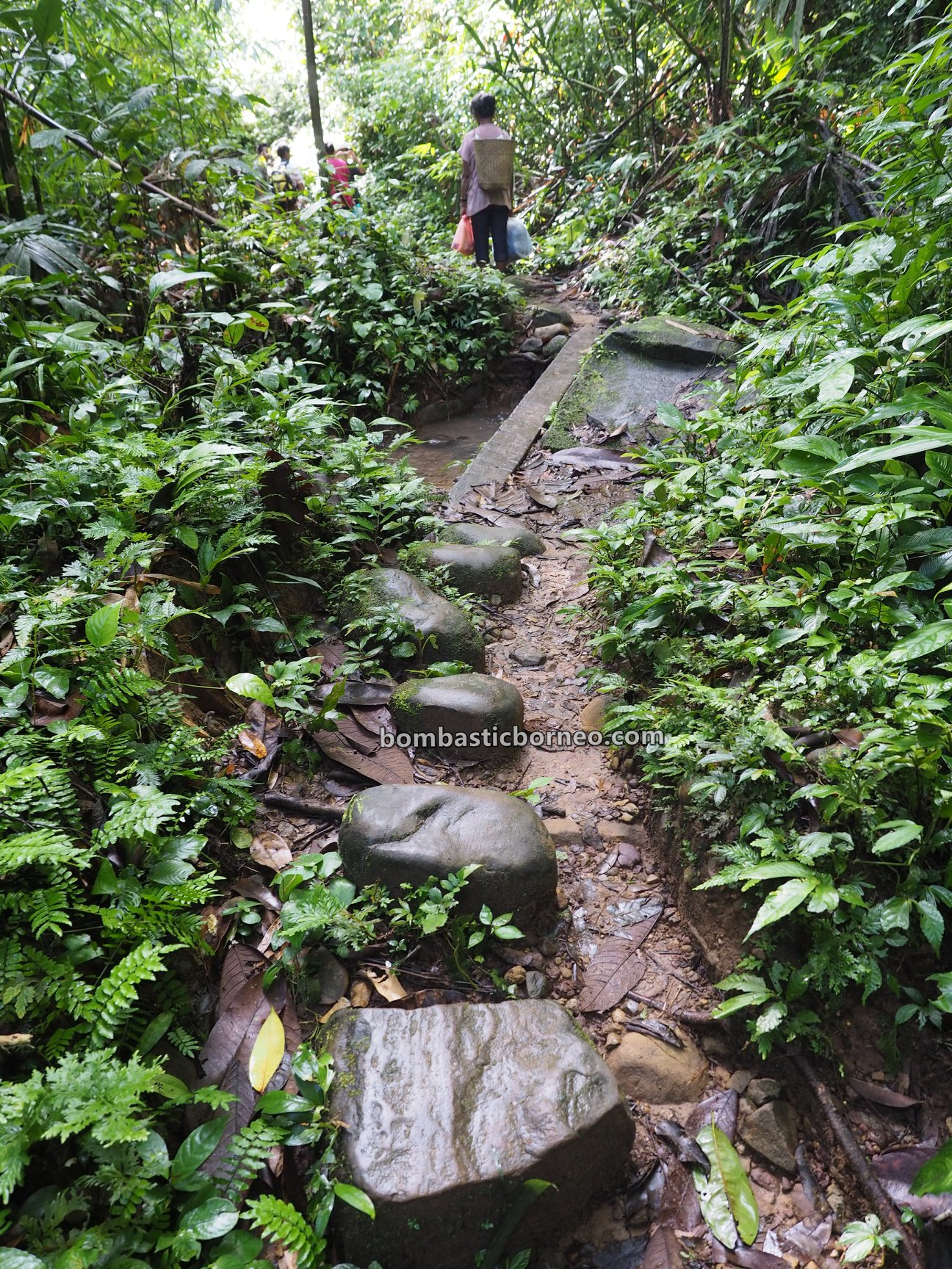 Dusun Simpang Empat, jungle trekking, hiking, exploration, traditional, Desa Bengkawan, Seluas, wisata alam, tourist attraction, travel guide, native, village, Trans Borneo, 婆罗洲丛林徒步, 印尼西加里曼丹