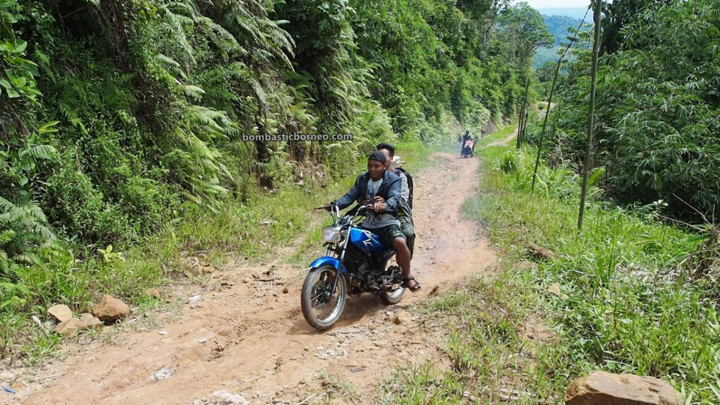 Desa Tamong, adventure, highland, Traditional, backpackers, destination, exploration, West Kalimantan, Bengkayang, Siding, Dayak bidayuh, Tourism, travel guide, 印尼西加里曼丹, 孟加映原住民部落