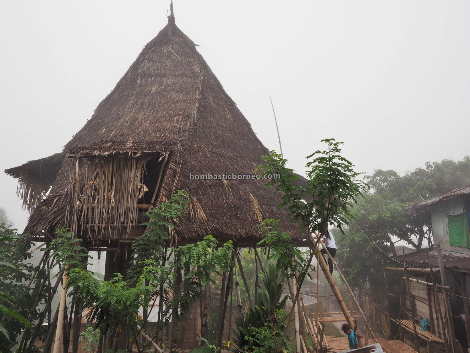 Traditional, village, culture, Gawai Dayak, Indonesia, Kalimantan Barat, native, tribe, Tourism, travel guide, Trans Borneo, Baruk, 探索婆罗洲游踪, 印尼西加里曼丹, 孟加映达雅部落