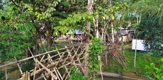 Sungkung Anep, Dusun Medeng, authentic, traditional, exploration, destination, Bengkayang, Indonesia, West Kalimantan, native, Dayak Bidayuh, village, Obyek wisata, Travel guide, Trans Border, Borneo,