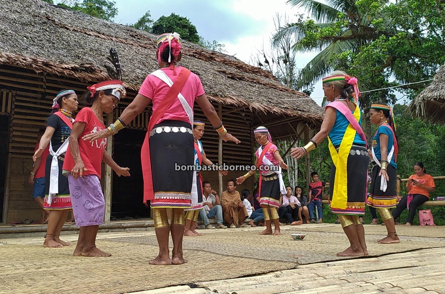 Gawai Serumpun, gelang tambaga, Sungkung Anep, Dusun Medeng, indigenous, Bengkayang, Indonesia, West Kalimantan, Dayak Bidayuh, native, tribal, Tourism, travel guide, 穿越婆罗洲丰收节, 印尼西加里曼丹, 原住民比达友族部落