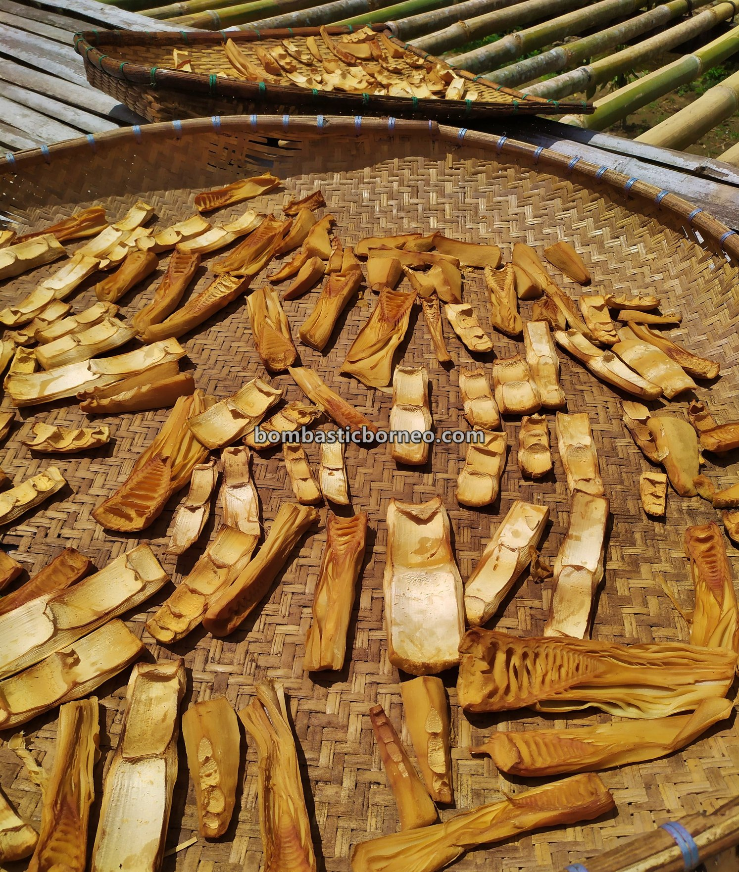 Sungkung Medeng, authentic, traditional, Bengkayang, Indonesia, native, Dayak Bidayuh, tribe, village, Tourism, Travel guide, 婆罗洲原住民部落, 印尼西加里曼丹,