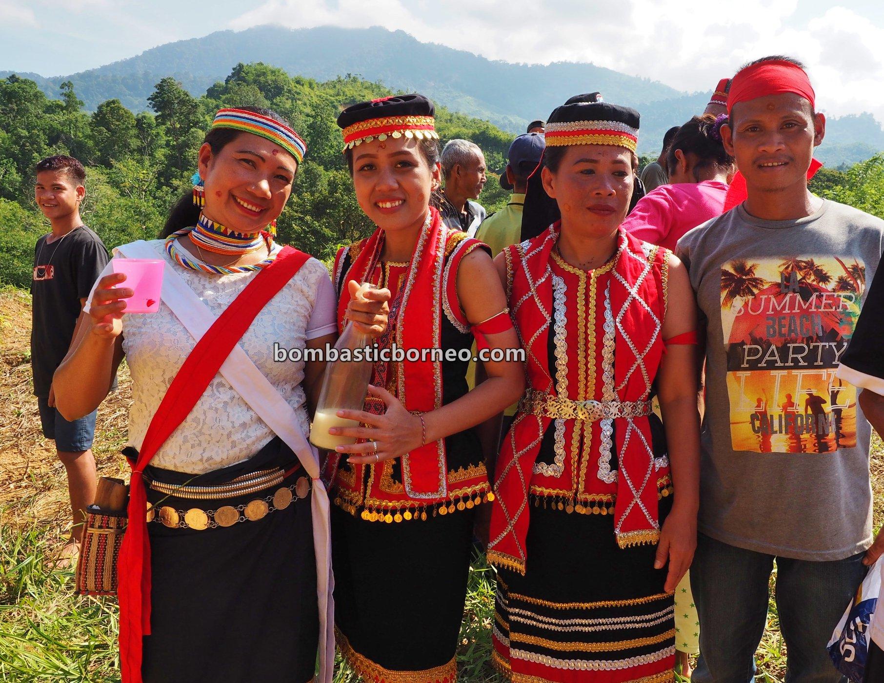 Sungkung Anep, Dusun Medeng, indigenous, destination, Bengkayang, West Kalimantan, Dayak Bidayuh, Ethnic, tribe, village, Tourism, Trans Borneo, 婆罗洲土著部落, 孟加映达雅丰收节日, 原住民传统文化,