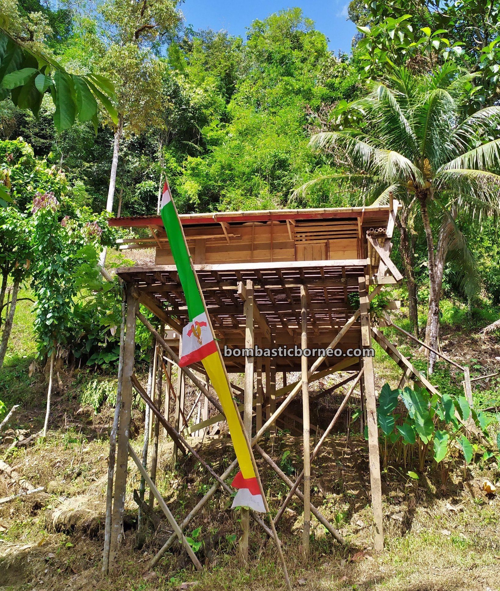 Dusun Medeng, authentic, traditional, destination, Bengkayang, Kalimantan Barat, Siding, Dayak Bidayuh, tribe, Gawai harvest festival, Tourism, Travel guide, Trans Border, 印尼西加里曼丹, 原住民土著部落