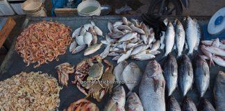 Pasar Turi, Morning Market, tradisional, destination, Indonesia, Kalimantan Barat, Kota Singkawang, seafood, salted fish, ikan, makanan laut, Obyek wisata, Tourism, travel guide, Trans Border, Borneo,