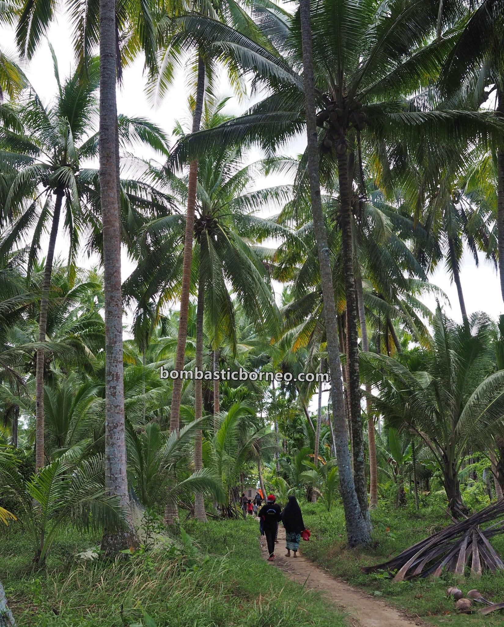 Pantai Putri Serayi, beach, adventure, traditional, nature, Malay fishing village, Indonesia, West Kalimantan, Tourism, tourist attraction, Borneo, Cross Border, 探索婆罗洲游踪, 印尼西加里曼丹, 三发马来渔村