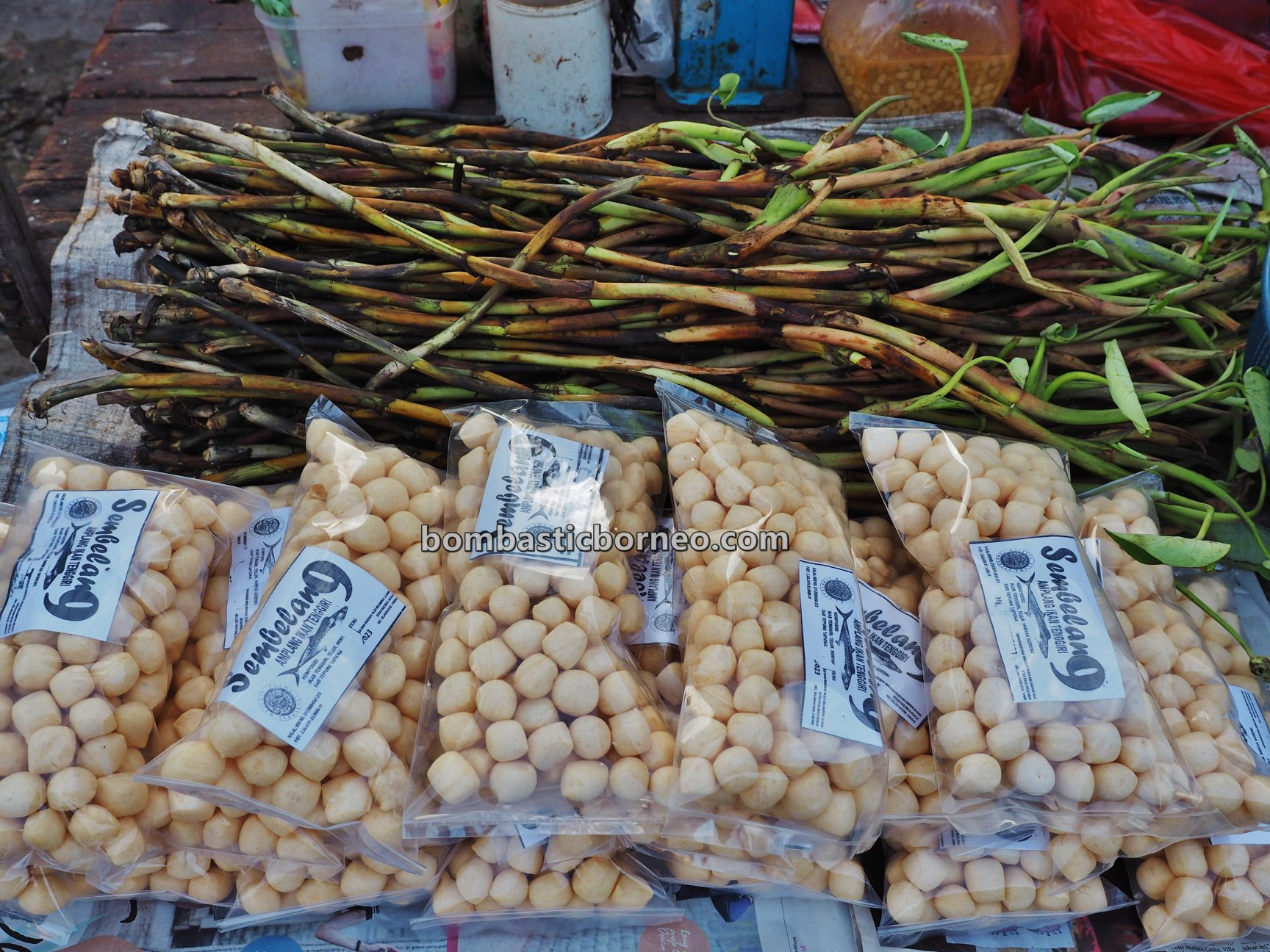 Morning Market, authentic, tradisional, backpackers, West Kalimantan, Kota Amoi, seafood, Tourism, tourist attraction, travel guide, Trans Borneo, 印尼西加里曼丹, 山口洋早市