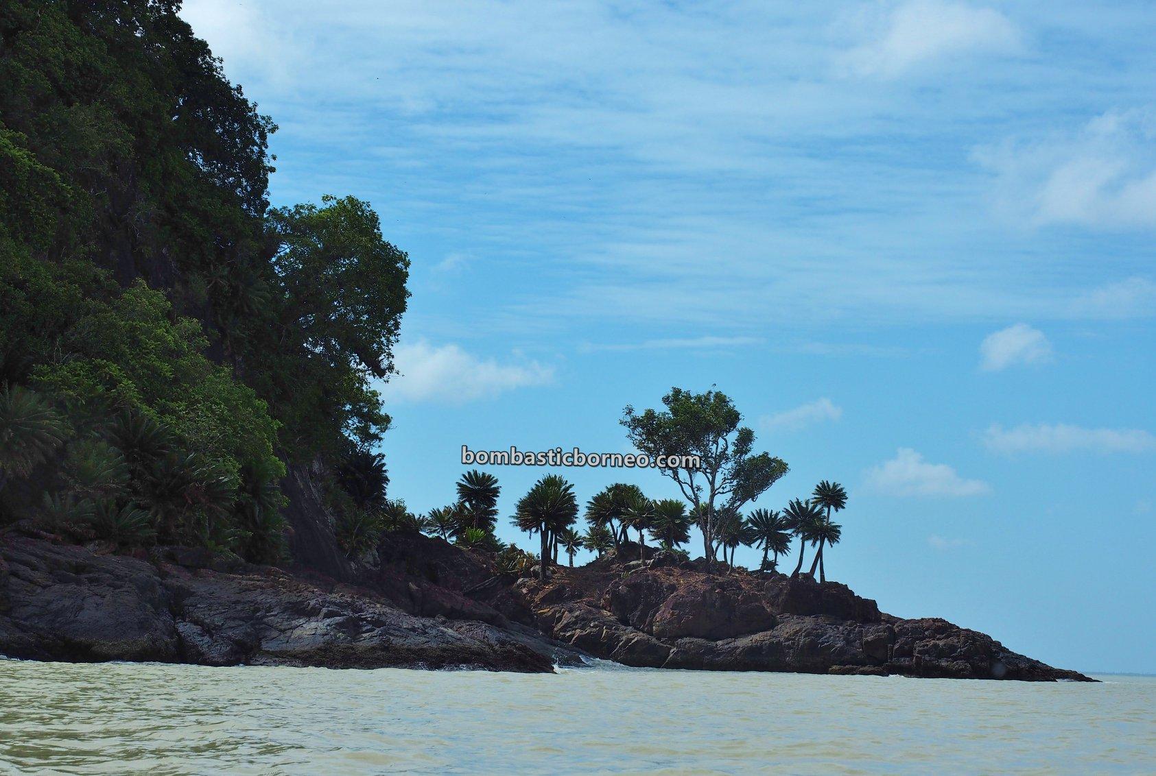 island, adventure, nature, mussel, kerang, Nelayan, fishing, Jawai Selatan, wisata alam, travel guide, destination, Borneo, 跨境婆罗洲游踪, 印尼西加里曼丹, 三发马来渔村