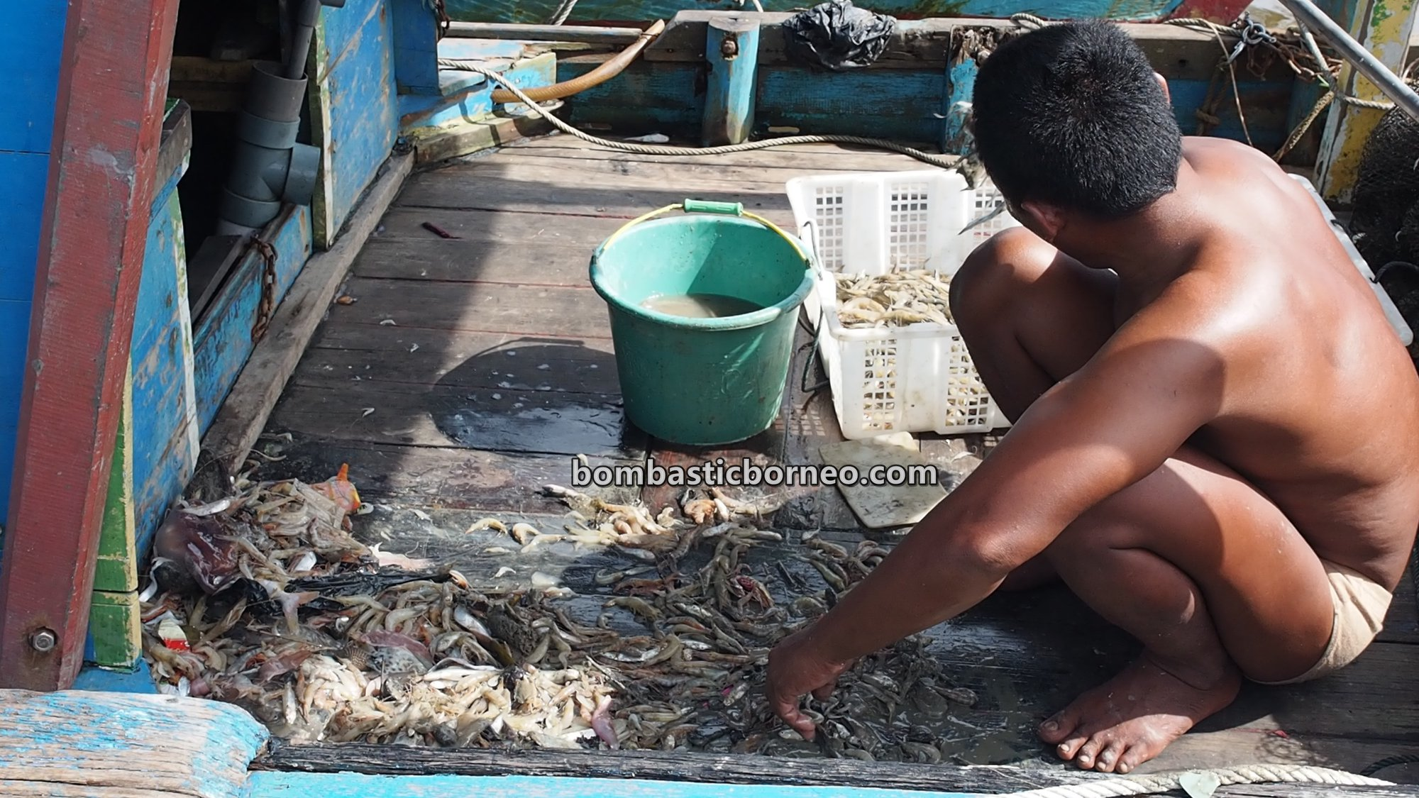 Kampung Nelayan Melayu, authentic, traditional, destination, Kalimantan Barat, Kelurahan Kuala, seafood, travel guide, Trans Border, 探索婆罗洲游踪, 印尼西加里曼丹, 山口洋马来渔村