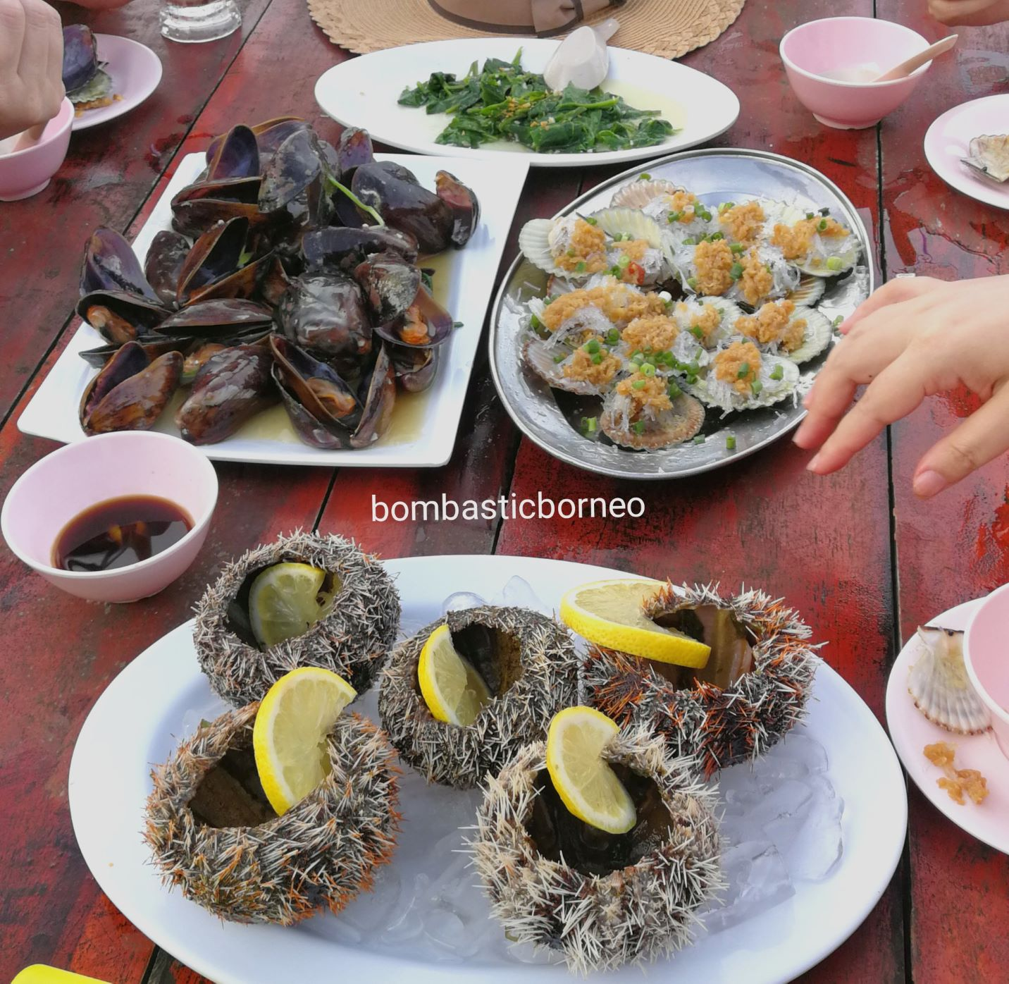 makanan laut, seafood, backpackers, destination, Semporna, Tawau, Sabah, Malaysia, Tourism, tourist attraction, travel guide, Trans Border, Borneo,